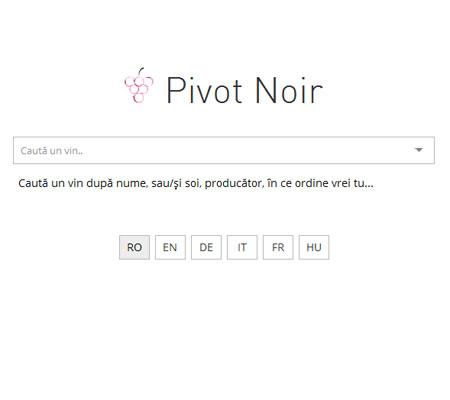 Pivot Noir